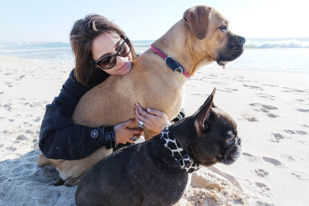 Beach Puppy Walk